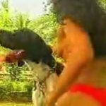Brasileira morena se acabando de chupar o pinto do cachorro